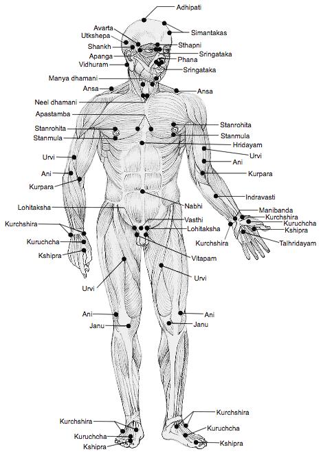marma drukpuntmassage3